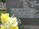 Profile photo:  A. Albert VanHorn