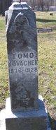 Tomo Kovachek