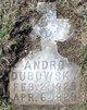 Andro Dubowsky