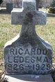 Ricardo Ledesma