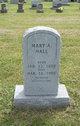 Mary Ann <I>Vanhook</I> Hall