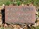 Profile photo:  Adam Amish