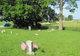 Sandy Bluff Cemetery