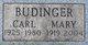 Mary Theresa <I>Cronin</I> Budinger