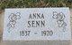 Profile photo:  Anna Senn