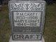 Peter M Craft
