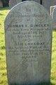 Profile photo:  Loveday Dingley