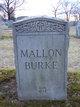 Profile photo:  Mallon
