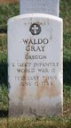 Profile photo:  Waldo Gray