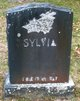 Profile photo:  Sylvia