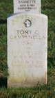 Profile photo:  Tony C Campanella