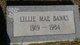 Lilie Mae Banks