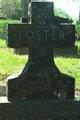 Alexander Davis Foster, Jr