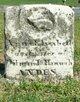 Anna Elizabeth Andes