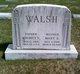 Maurice Ed Walsh