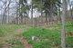 Bolinger Family Cemetery