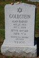 Profile photo:  Alan Harvey Goldstein