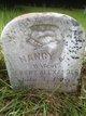 Profile photo:  Nancy J Alexander