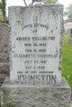 Andrew W Johnston