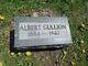Profile photo:  Albert Gullion