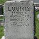 Dorcilla <I>King</I> Loomis