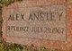 Profile photo:  Alex Anstey