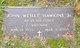John Wesley Hawkins, Jr
