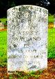 Profile photo:  John Wesley Wayland