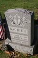 Profile photo:  Joan C Bachich
