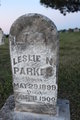 Profile photo:  Leslie N. Parkes