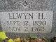 Llwyn H Jamison