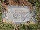 Daniel Mirl Barnett