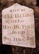 Catherine <I>Reynolds</I> Elledge