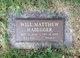 Will Matthew Habegger