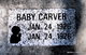 Profile photo:  Baby Carver