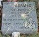 Profile photo:  Joel Antonio Adames