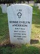 Bobbie Evelyn Anderson
