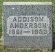 Profile photo:  Addison Anderson