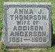 Profile photo:  Anna Jane <I>Thompson</I> Anderson
