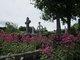 Ardnaree Abbey Graveyard