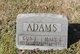 Mary Elizabeth <I>Perdue</I> Adams