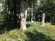 Wilcox Cemetery #1