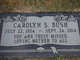 Profile photo:  Carolyn Sue <I>Hayes</I> Bush
