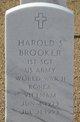 Profile photo:  Harold S Brooker