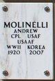 Profile photo:  Andrew Molinelli