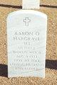Profile photo:  Aaron Ophel Hargrave