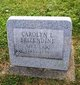 Profile photo:  Carolyn L. <I>Shepler</I> Brizendine