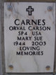 Mary Sue <I>Parker</I> Carnes