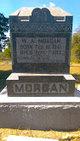 W A Morgan