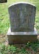 Profile photo:  Julia Louisa <I>Hubbell</I> Adams Campbell